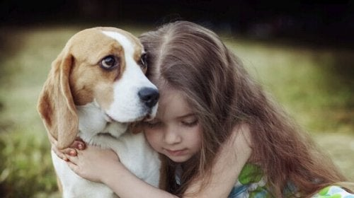 dziewczynka z psem - dlaczego kochamy zwierzęta