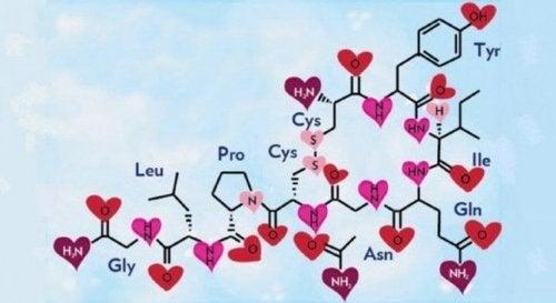 Hormony oxytocyny.