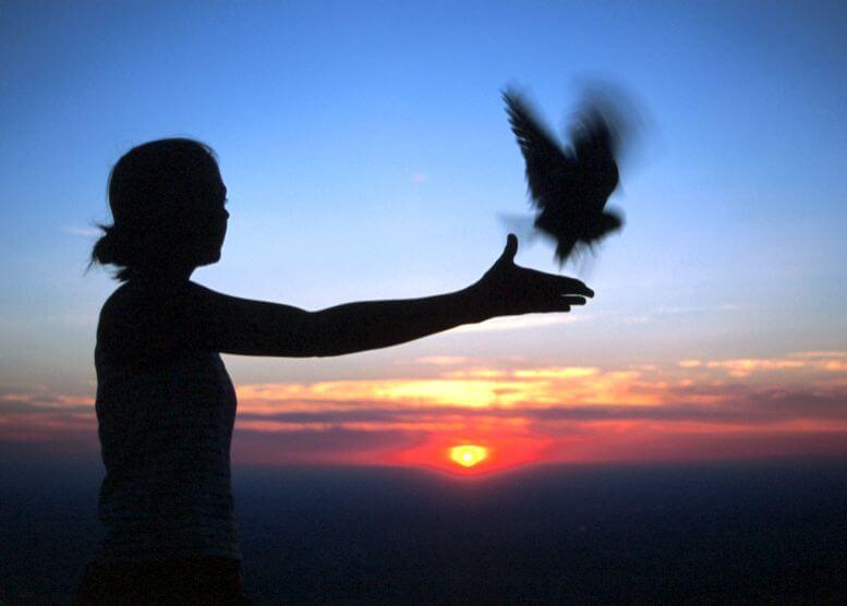 kobieta uwalniająca ptaka