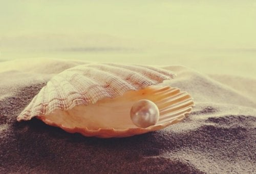 Ostryga z perłą
