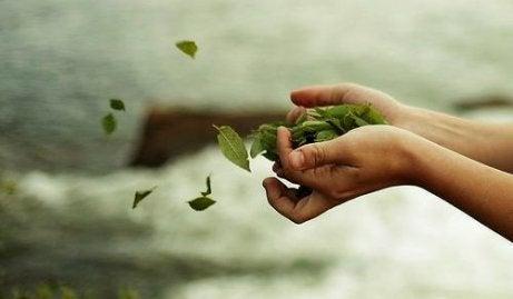 Ręka wyrzucająca liście.