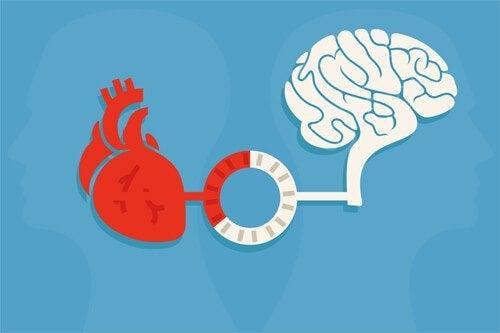Rozsądek i emocje: równowaga i dobre decyzje