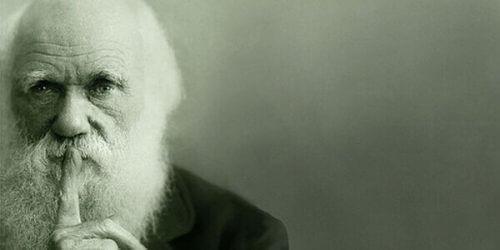 Darwin selekcja naturalna