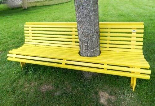 Drzewo w ławce