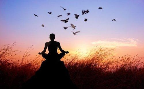 Medytacja o zachodzie słońca