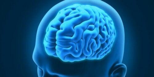 Zaburzenia neurologiczne - 3 ciekawe przykłady