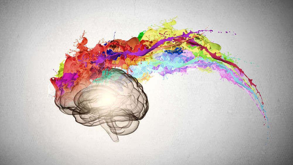 mózg z kolorami tęczy