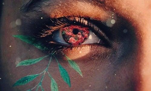 Cierpliwość poznawcza - oko