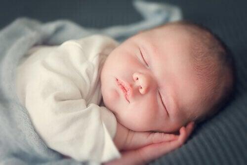 Śpiący bobas