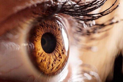 Spojrzałam w oczy demonom