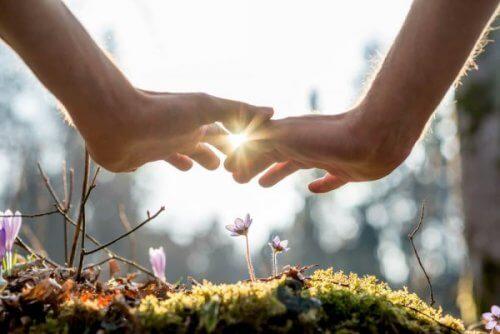 Potęga cierpliwości - Dwie dłonie nad kwiatkiem w lesie