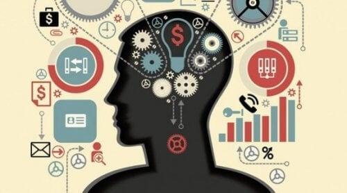 Funkcje wykonawcze: mentalne zdolności mózgu
