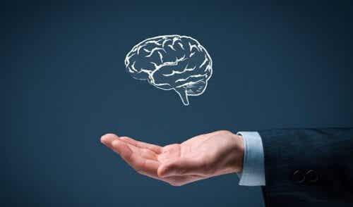 Prosta inteligencja - poznaj jej 6 zasad