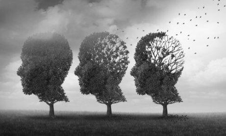 Trzy drzewa w kształcie głowy człowieka