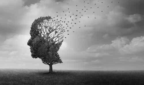 Majaczenie w chorobie Alzheimera - poznaj bliżej to zagadnienie