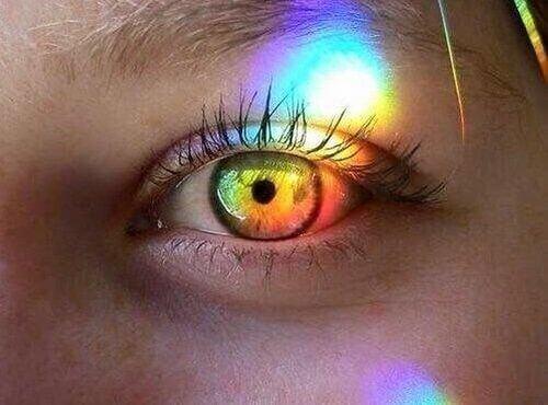 Kolorowe światło pada na oko
