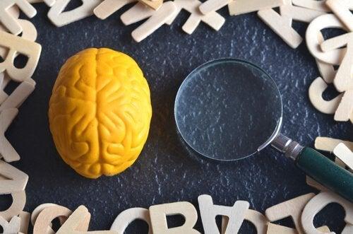 Czym jest psychologia eksperymentalna? Dowiedz się czegoś więcej!