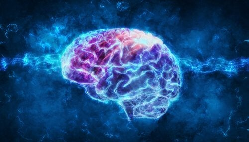Psychofizjologia: czy wiesz, czym dokładnie zajmuje się ta dziedzina?