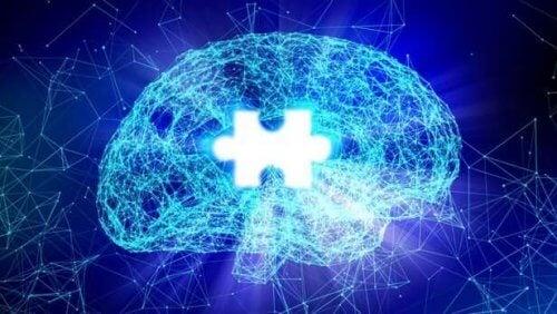 Puzzle - mózg