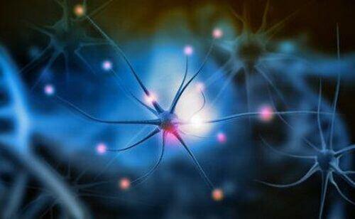 Neuroprzekaźnik