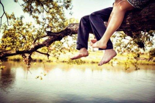 para siedzi na drzewie nad wodą