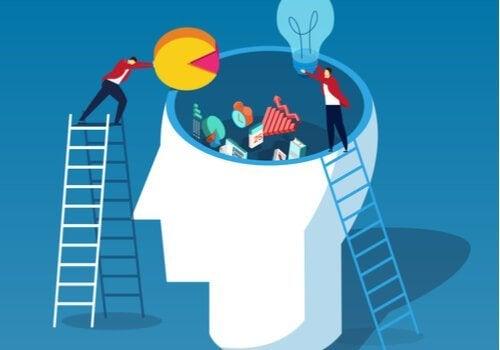 Teoria obciążenia poznawczego Johna Swellera - poznaj jej podstawowe założenia