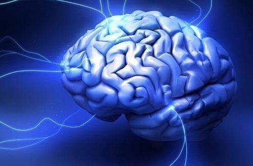 Mózg gadzi