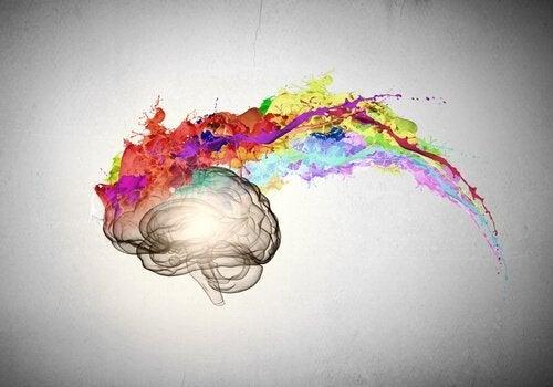 Mózg z kolorami