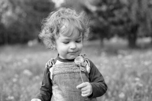 Chłopiec z dmuchawcem