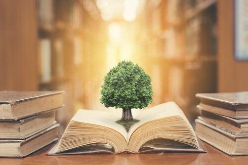 drzewo wyrastające z książki