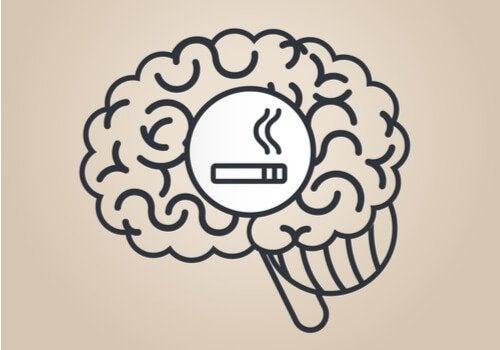 Nikotyna: z pewnością nie wiesz, jak wpływa ona na Twój mózg!
