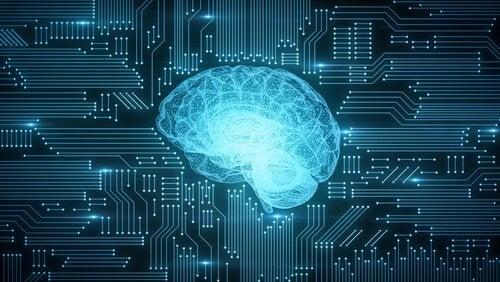 Czy wiesz czym jest koneksjonizm? Oto garść podstawowych informacji na ten temat!