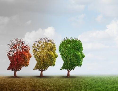 Trzy drzewa przycięte w kształt głowy