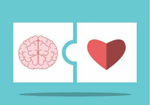 Teoria inteligencji emocjonalnej Saloveya i Mayera - poznaj jej podstawowe założenia