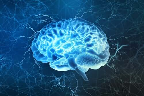 Niebieski mózg