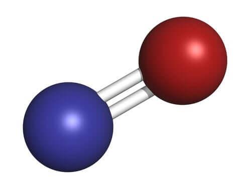 Tlenek azotu - poznaj ten niesamowity neurotransmiter!