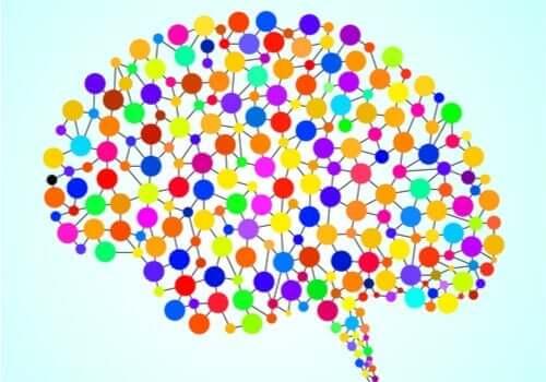 Mózg i 97 nowo odkrytych obszarów – poznaj je bliżej