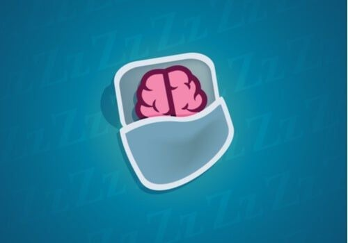 Nasze neurony - czy wiesz, co się z nimi dzieje kiedy śpimy?