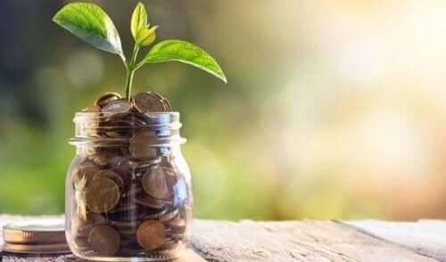 Słoik z pieniędzmi i rośliną