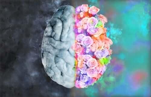 Neuroestetyka: związek neurologii i sztuki