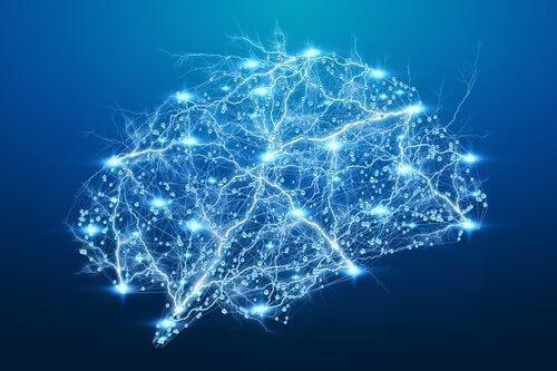 Rehabilitacja neuropsychologiczna - przełom technologiczny w tej dziedzinie