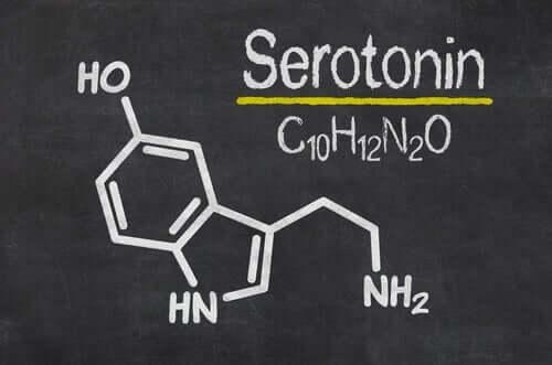 Serotonina to także monoaminy