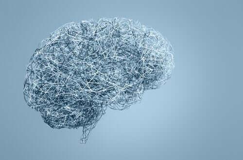 Stimoceiver i mózg