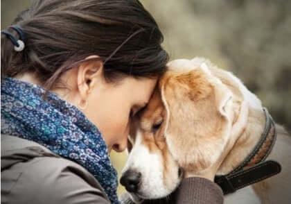 Kobieta dotykająca się czołem z psem