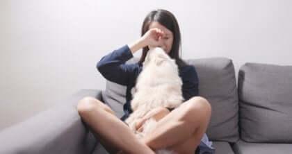 Płacząca kobieta z psem - psy domowe