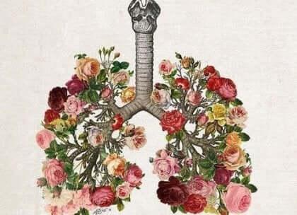 Płuca ułożone z kwiatów