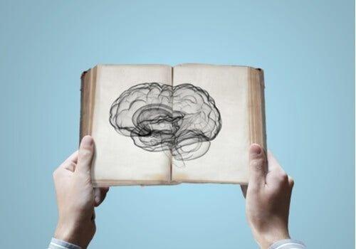 Czy dziedziczenie wiedzy jest możliwe z punktu widzenia neuronauki?