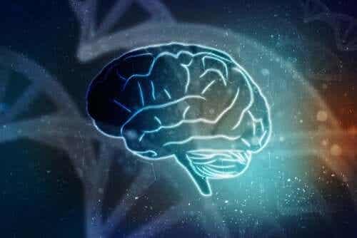Mózg można wskrzesić bez ciała?