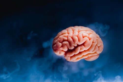 Obraz latającego mózgu
