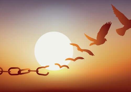 Zwolnienie za kaucją: jaki jest jego cel?